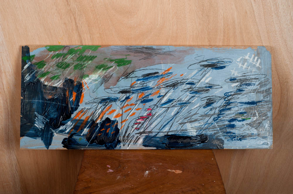 Receptor Fied (Blue), 2017. Mixed-media on wood, 28 x 67cm.