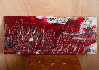 Receptor Fied (Red), 2017. Mixed-media on wood, 28 x 67cm.